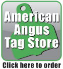 American Angus Tag Store